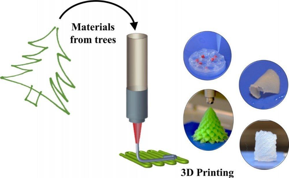 3D-принтер вместо лесосеки, не фантастика, а близкая реальность, «печатная» древесина, наноцеллюлозный гель