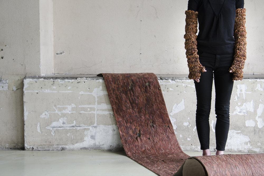 Сосновая кора, Латвийский дизайнер Сармите Полакова, Увидеть ценность и найти ей применение
